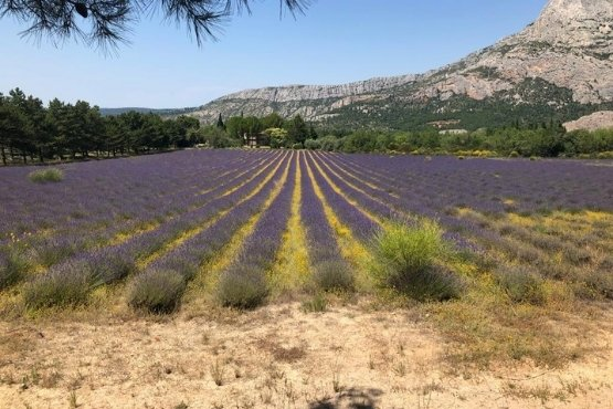 Tourisme en Provence avec chauffeur au depart de Aix en Provence